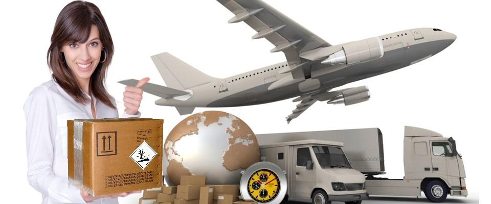 Dangerous goods packing